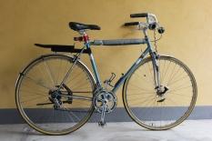 BiciCarlo2